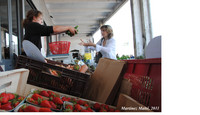 Link between customers and producers on Farmers markets in Marseille